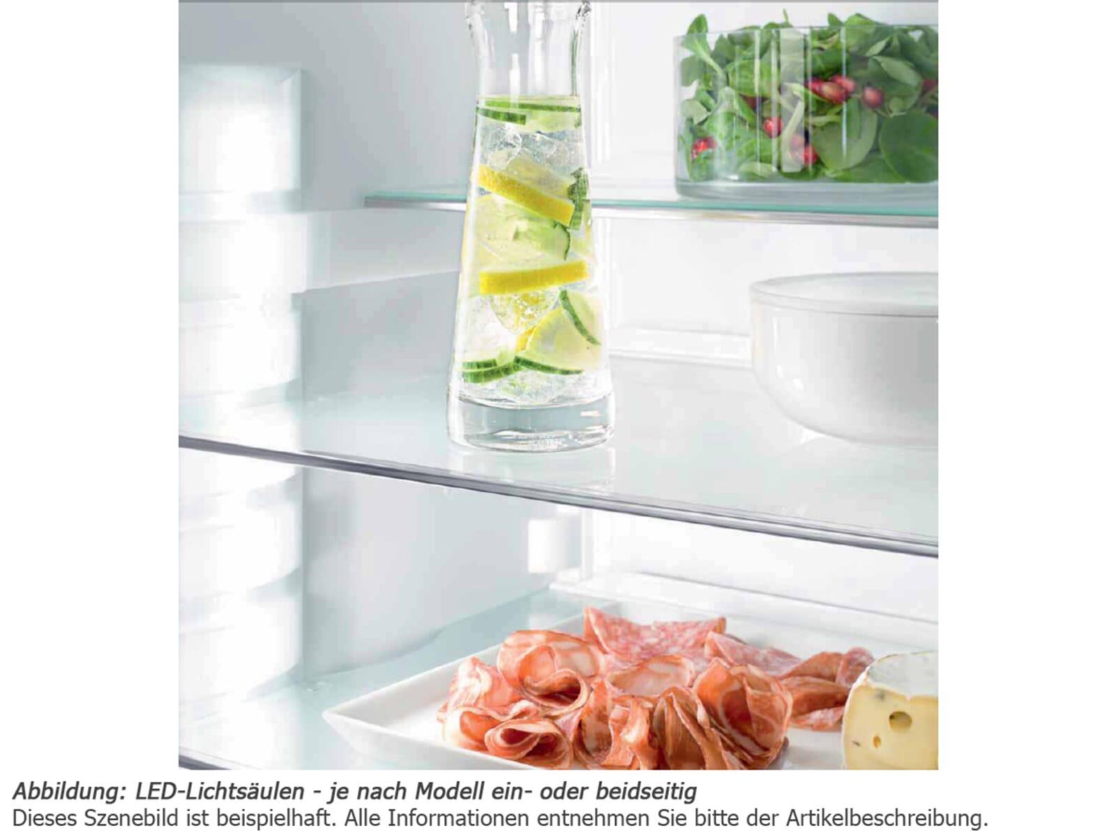 liebherr ecbn 5066 premiumplus biofresh nofrost. Black Bedroom Furniture Sets. Home Design Ideas
