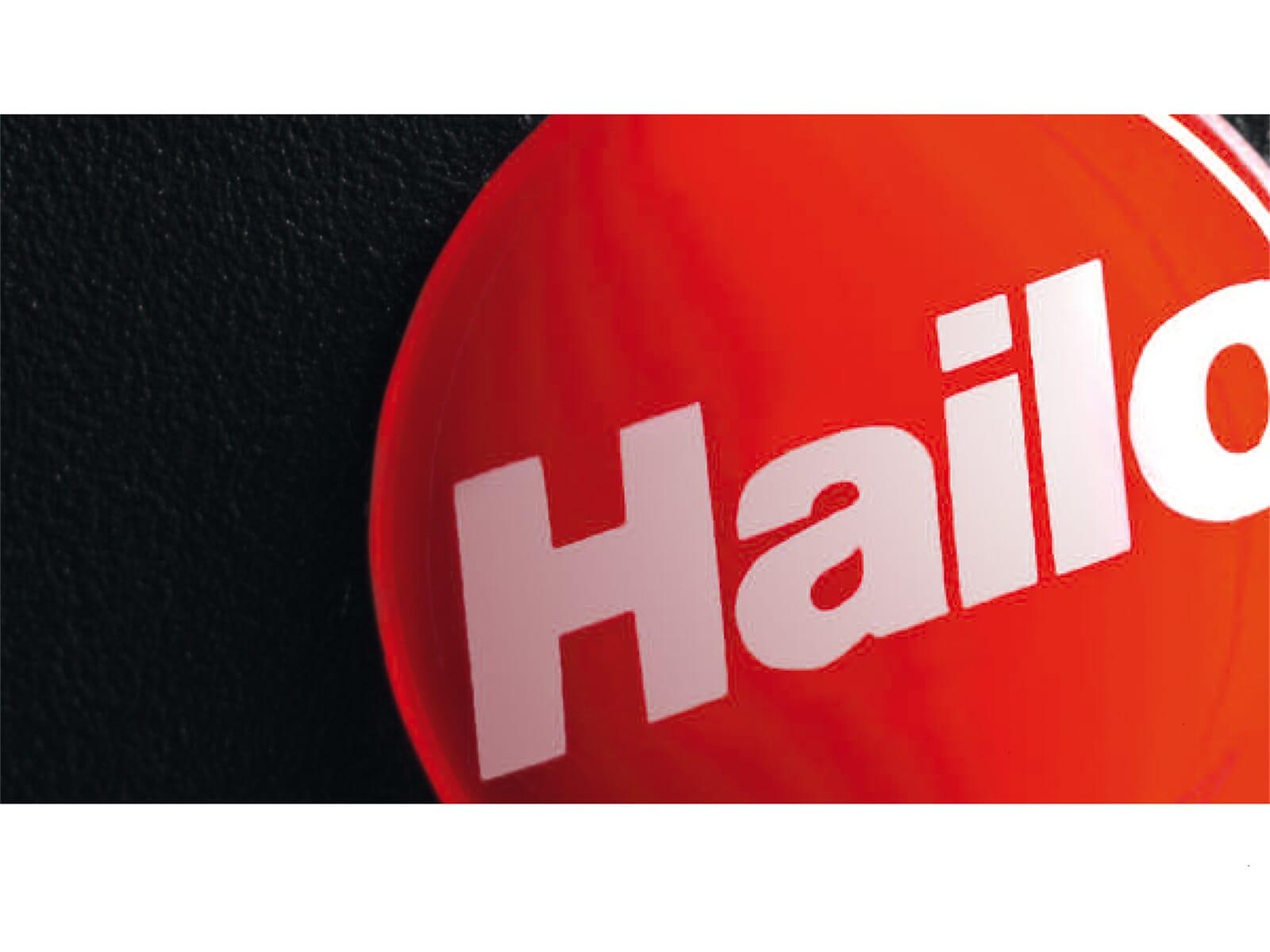 Hailo Terzett 3666-19 Einbau Abfallsammler